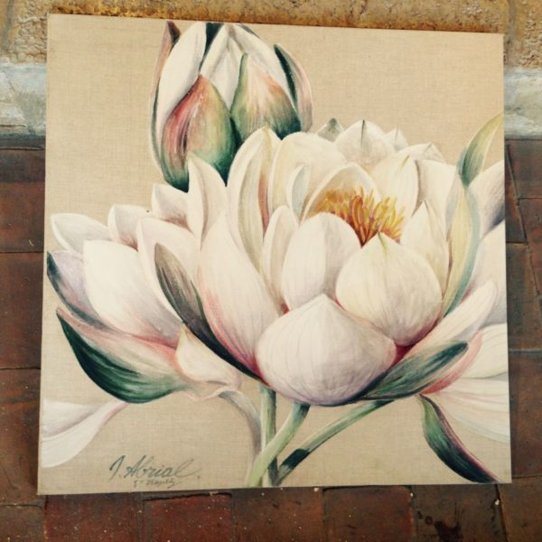 Lotus premier - © Josiane ABRIAL
