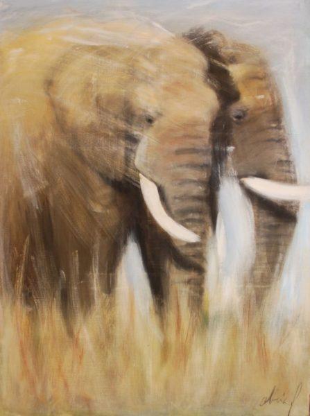 Couple d'éléphants
