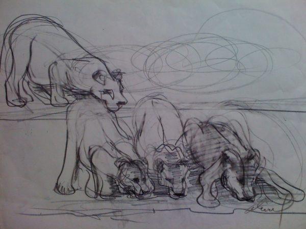 Les lionnes buvant (Etude)