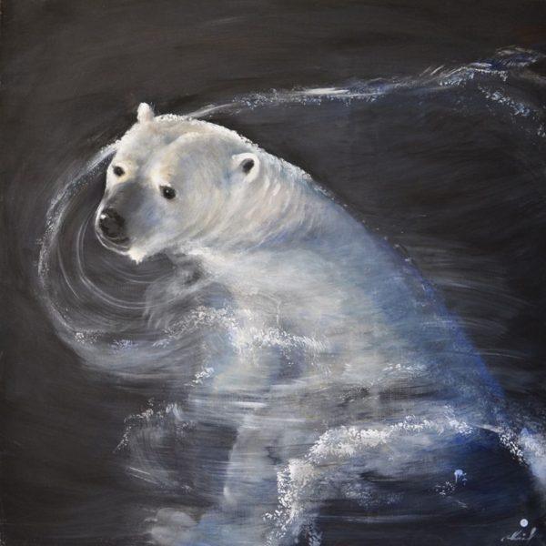 Ours blanc dans l'eau