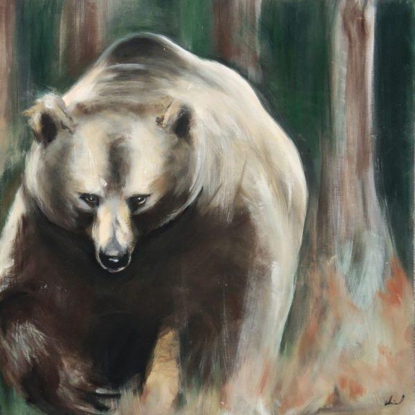 Grizzly dans la forêt