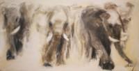 Charge d'éléphants