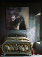 Grizzly en Portrait