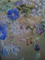 Toutes les fleurs bleues de Provence